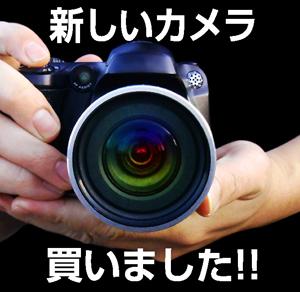 blog_160401